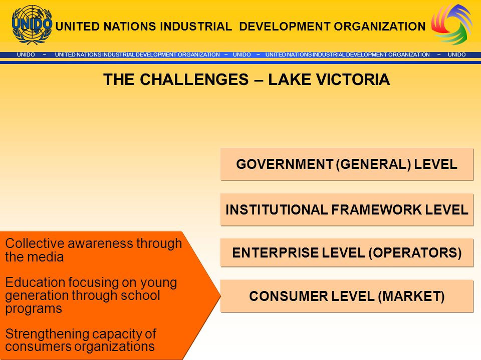 UNITED NATIONS INDUSTRIAL DEVELOPMENT ORGANIZATION UNIDO ~ UNITED NATIONS INDUSTRIAL DEVELOPMENT ORGANIZATION ~ UNIDO ~ UNITED NATIONS INDUSTRIAL DEVELOPMENT ORGANIZATION ~ UNIDO GOVERNMENT (GENERAL) LEVEL INSTITUTIONAL FRAMEWORK LEVEL ENTERPRISE LEVEL (OPERATORS) CONSUMER LEVEL (MARKET) THE CHALLENGES – LAKE VICTORIA Collective awareness through the media Education focusing on young generation through school programs Strengthening capacity of consumers organizations