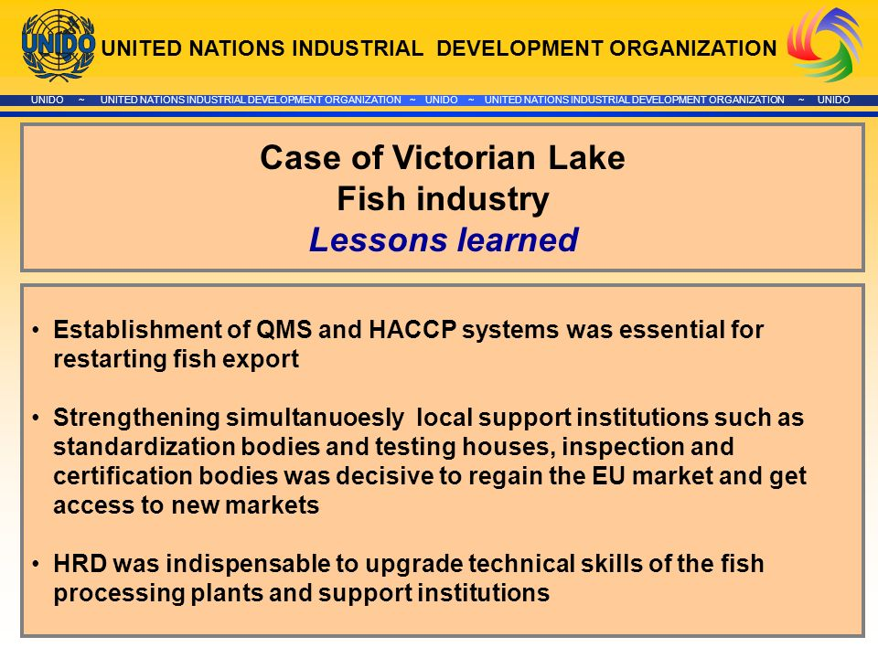 UNITED NATIONS INDUSTRIAL DEVELOPMENT ORGANIZATION UNIDO ~ UNITED NATIONS INDUSTRIAL DEVELOPMENT ORGANIZATION ~ UNIDO ~ UNITED NATIONS INDUSTRIAL DEVELOPMENT ORGANIZATION ~ UNIDO Case of Victorian Lake Fish industry Lessons learned Establishment of QMS and HACCP systems was essential for restarting fish export Strengthening simultanuoesly local support institutions such as standardization bodies and testing houses, inspection and certification bodies was decisive to regain the EU market and get access to new markets HRD was indispensable to upgrade technical skills of the fish processing plants and support institutions