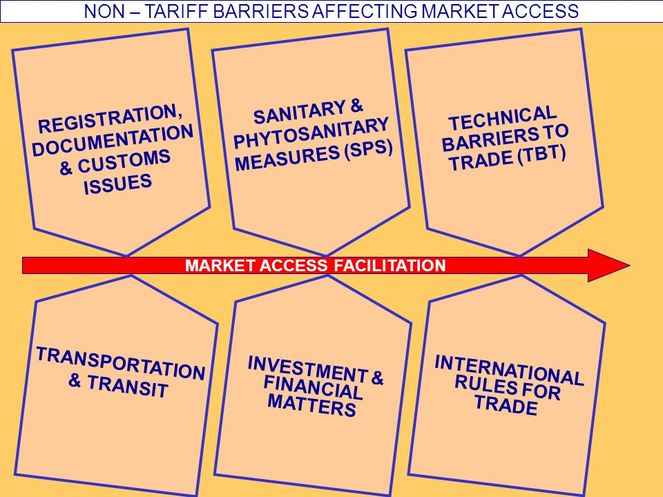 MARKET ACCESS FACILITATION INTERNATIONAL RULES FOR TRADE TRANSPORTATION & TRANSIT TECHNICAL BARRIERS TO TRADE (TBT) NON – TARIFF BARRIERS AFFECTING MARKET ACCESS SANITARY & PHYTOSANITARY MEASURES (SPS) REGISTRATION, DOCUMENTATION & CUSTOMS ISSUES INVESTMENT & FINANCIAL MATTERS