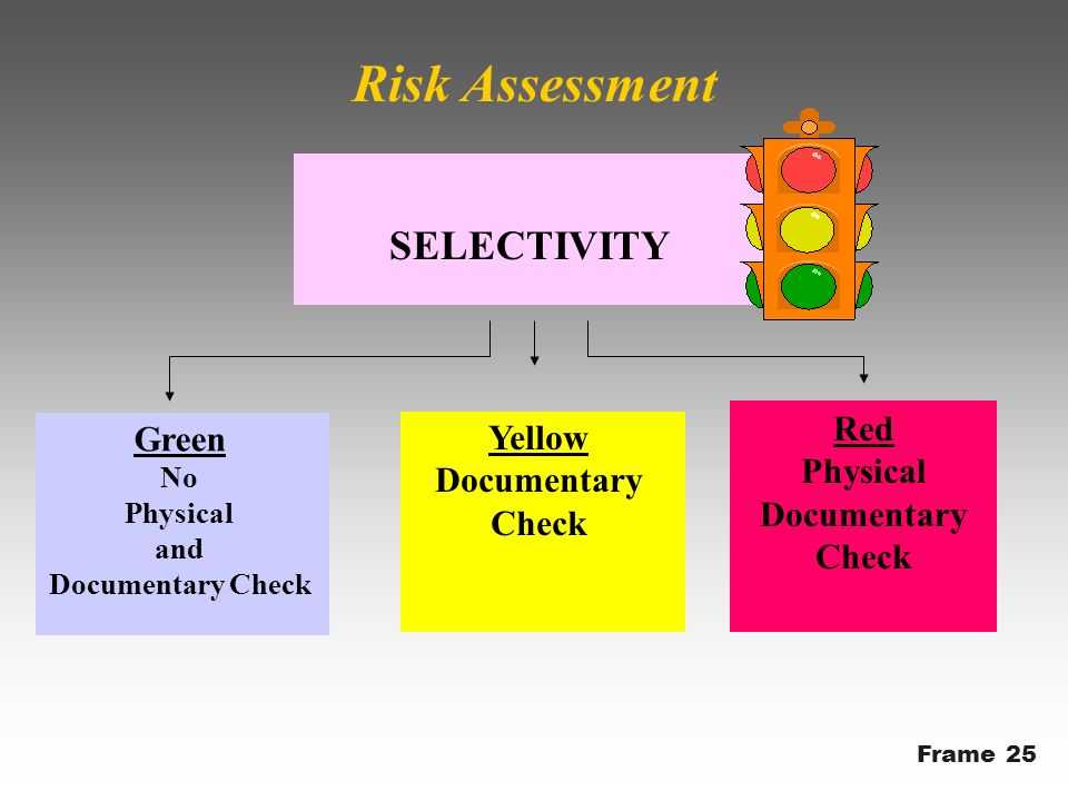 Green No Physical and Documentary Check Yellow Documentary Check Red Physical Documentary Check SELECTIVITY Risk Assessment Frame 25