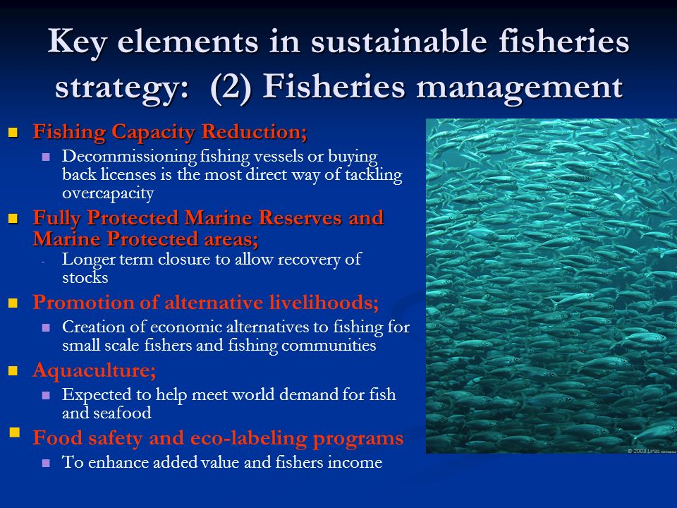 Key elements in sustainable fisheries strategy: (2) Fisheries management Fishing Capacity Reduction; Fishing Capacity Reduction; Decommissioning fishi
