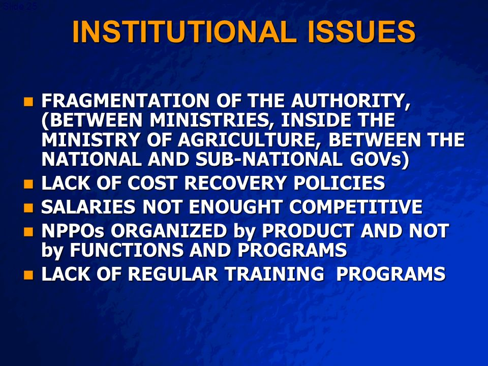 A Free sample background from www.powerpointbackgrounds.com Slide 25 INSTITUTIONAL ISSUES FRAGMENTATION OF THE AUTHORITY, (BETWEEN MINISTRIES, INSIDE