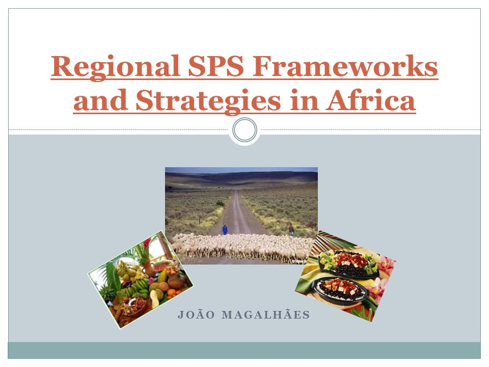 JOÃO MAGALHÃES Regional SPS Frameworks and Strategies in Africa