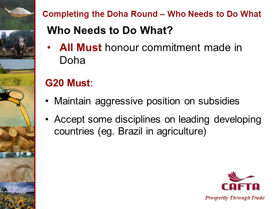 Completing the Doha Round – Who Needs to Do What Prosperity Through Trade Who Needs to Do What.