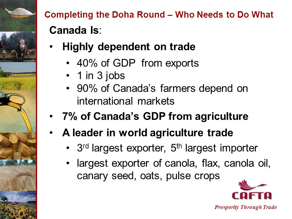 Completing the Doha Round – Who Needs to Do What Canada Is: Highly dependent on trade 40% of GDP from exports 1 in 3 jobs 90% of Canadas farmers depend on international markets 7% of Canadas GDP from agriculture A leader in world agriculture trade 3 rd largest exporter, 5 th largest importer largest exporter of canola, flax, canola oil, canary seed, oats, pulse crops