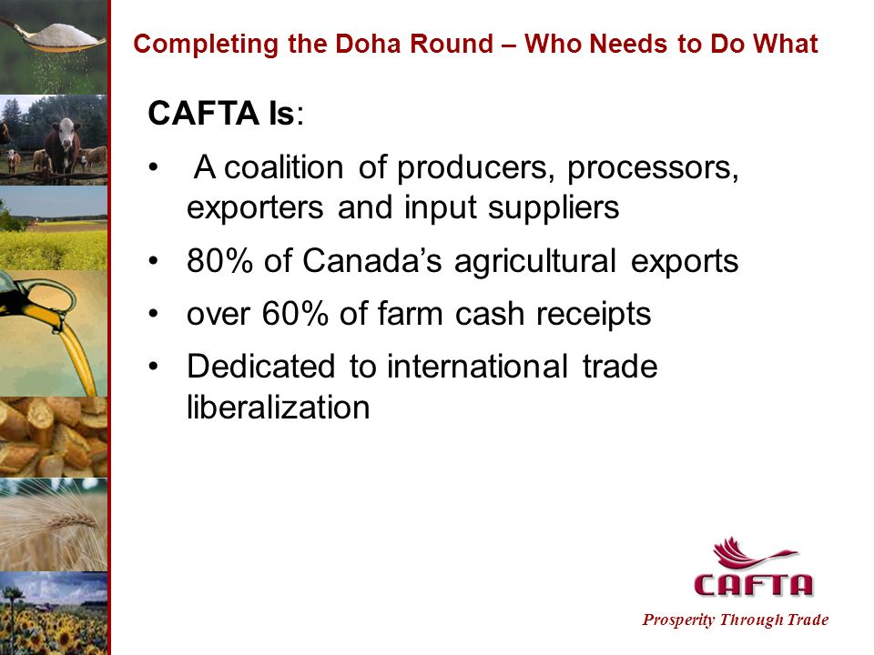 Completing the Doha Round – Who Needs to Do What CAFTA Is: A coalition of producers, processors, exporters and input suppliers 80% of Canadas agricultural exports over 60% of farm cash receipts Dedicated to international trade liberalization Prosperity Through Trade