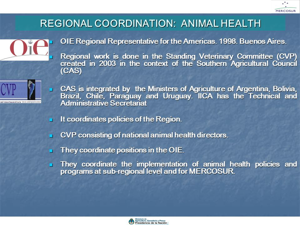 REGIONAL COORDINATION: ANIMAL HEALTH OIE Regional Representative for the Americas. 1998. Buenos Aires. OIE Regional Representative for the Americas. 1