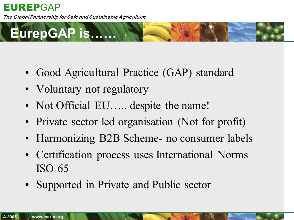The Global Partnership for Safe and Sustainable Agriculture EUREP GAP © 2005 www.eurep.org World Bank Stricter standards can provide a stimulus for investments in supply-chain modernization, provide increased incentives for the adoption of better safety and quality control practices in agriculture and food manufacturing, and help clarify the appropriate and necessary roles of government in food safety and agricultural health management.