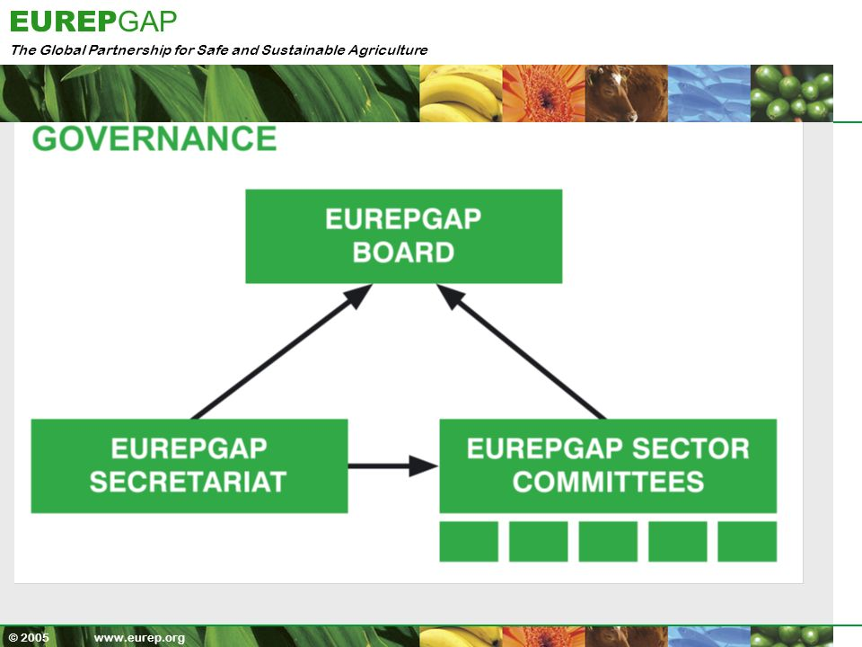 The Global Partnership for Safe and Sustainable Agriculture EUREP GAP © 2005 www.eurep.org Certificates in 80 Countries Certification - Global Spread