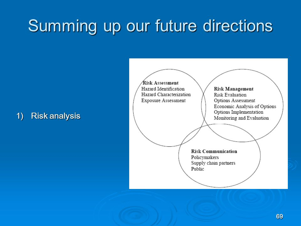 69 Summing up our future directions 1)Risk analysis