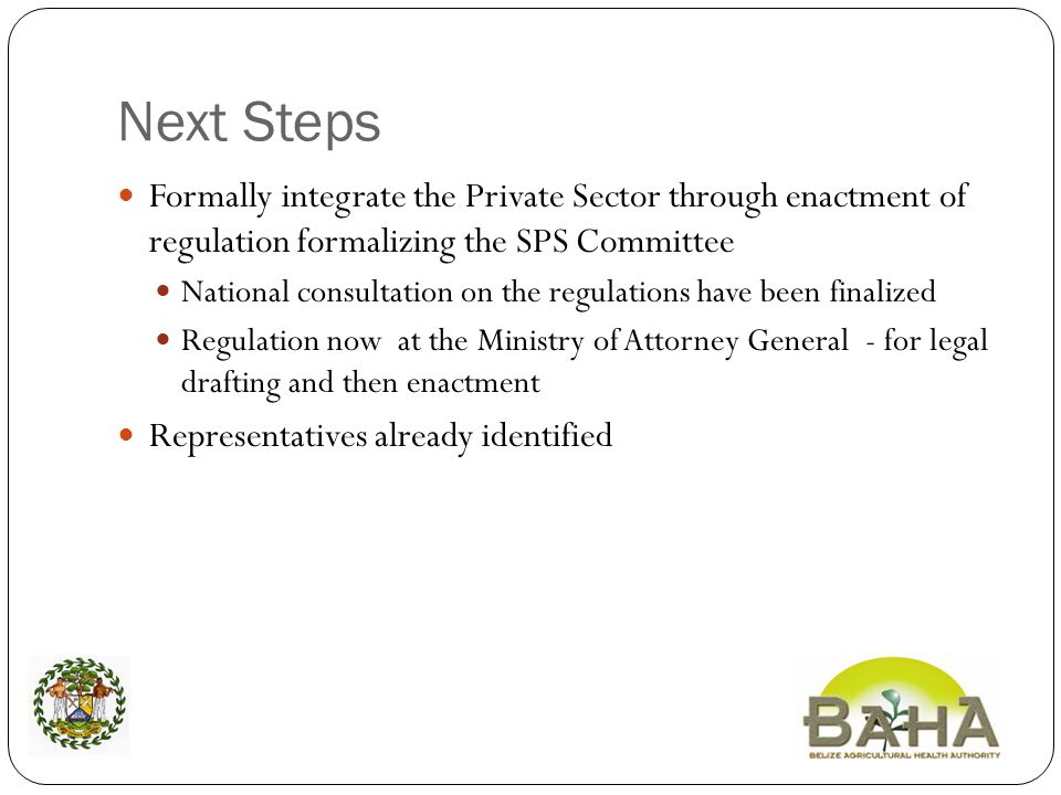 Next Steps Formally integrate the Private Sector through enactment of regulation formalizing the SPS Committee National consultation on the regulations have been finalized Regulation now at the Ministry of Attorney General - for legal drafting and then enactment Representatives already identified