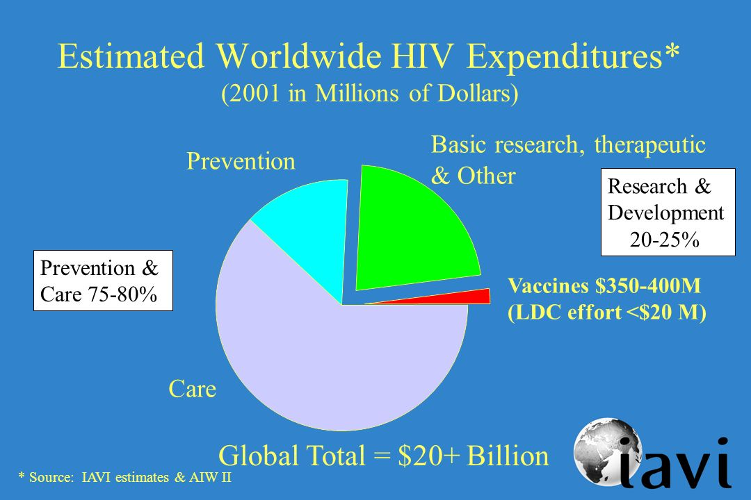 Estimated Worldwide HIV Expenditures* (2001 in Millions of Dollars) Research & Development 20-25% Prevention & Care 75-80% Vaccines $350-400M (LDC effort <$20 M) Prevention Care Basic research, therapeutic & Other * Source: IAVI estimates & AIW II Global Total = $20+ Billion