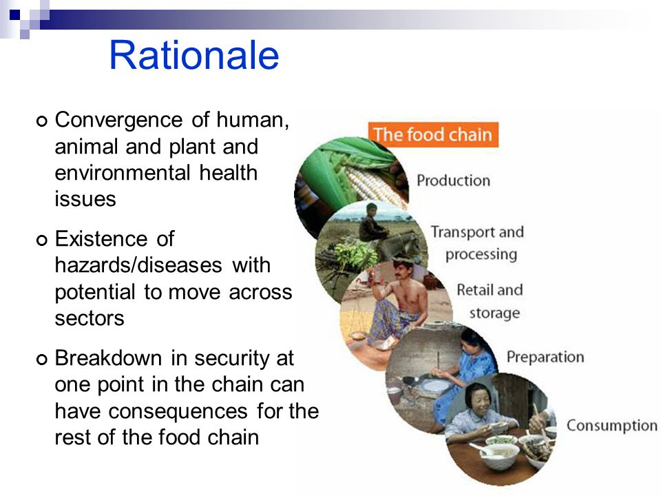 Rationale Convergence of human, animal and plant and environmental health issues Existence of hazards/diseases with potential to move across sectors B