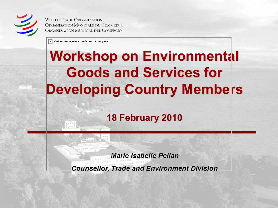Workshop on Environmental Goods and Services for Developing Country Members 18 February 2010 Marie Isabelle Pellan Counsellor, Trade and Environment Division