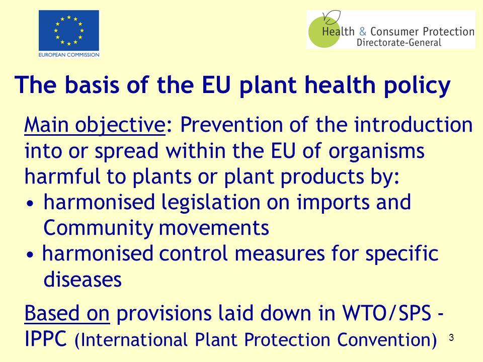 3 The basis of the EU plant health policy Main objective: Prevention of the introduction into or spread within the EU of organisms harmful to plants o