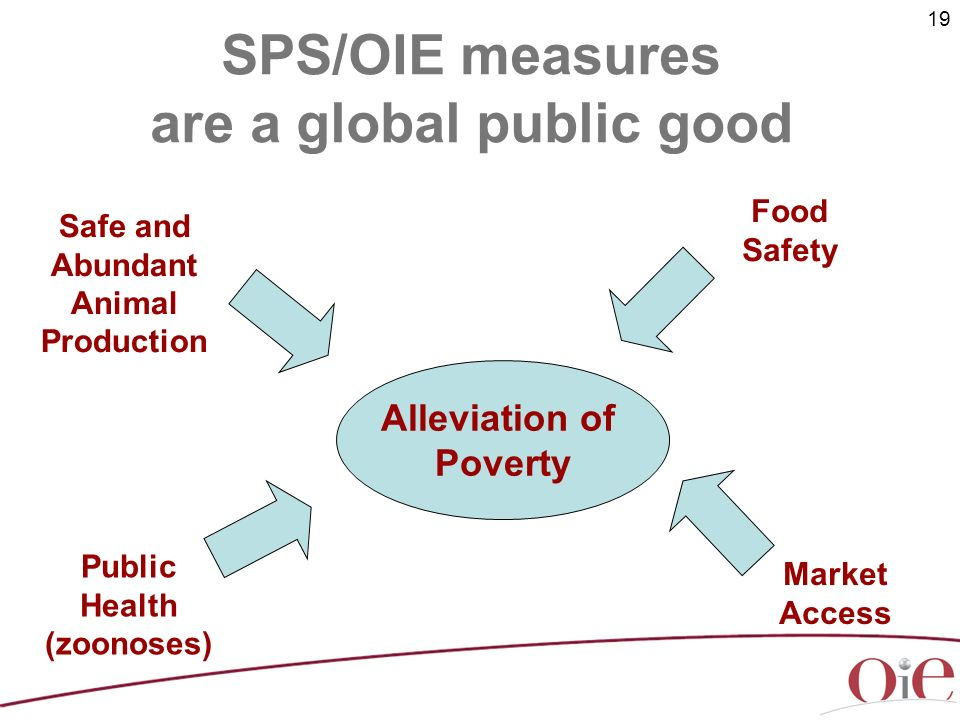 19 SPS/OIE measures are a global public good Alleviation of Poverty Safe and Abundant Animal Production Market Access Public Health (zoonoses) Food Safety