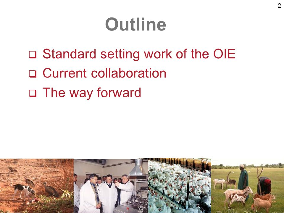 2 Standard setting work of the OIE Current collaboration The way forward Outline