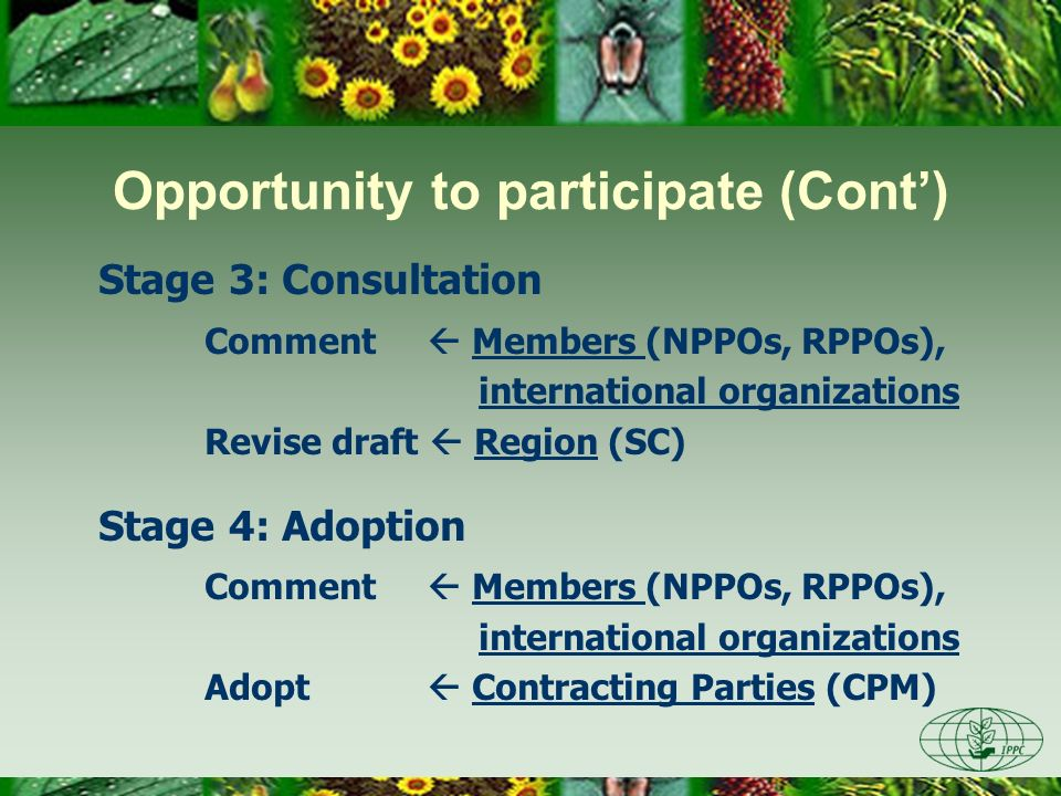 Stage 3: Consultation Comment Members (NPPOs, RPPOs), international organizations Revise draft Region (SC) Stage 4: Adoption Comment Members (NPPOs, R