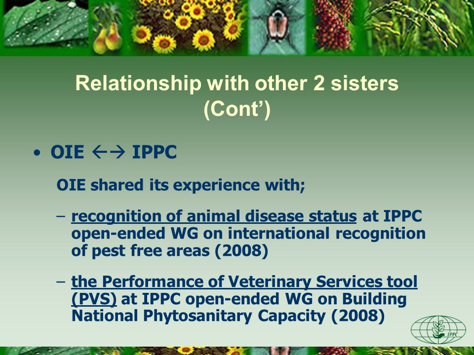 OIE IPPC OIE shared its experience with; –recognition of animal disease status at IPPC open-ended WG on international recognition of pest free areas (