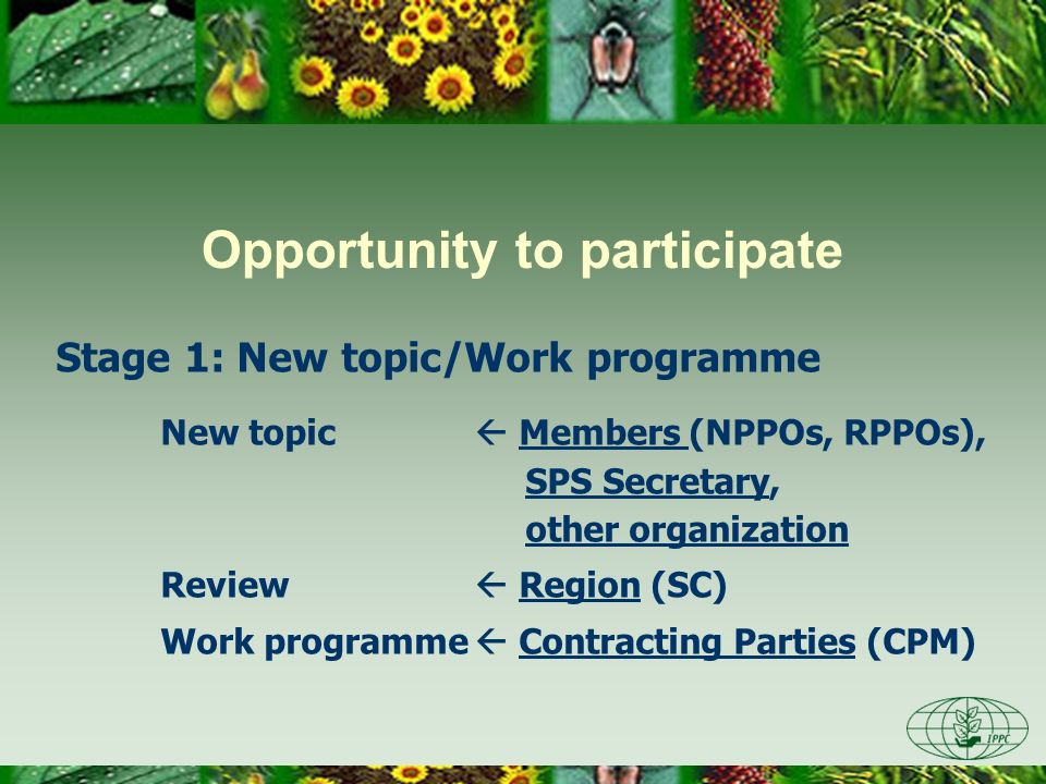 OIE IPPC OIE shared its experience with; –recognition of animal disease status at IPPC open-ended WG on international recognition of pest free areas (2008) –the Performance of Veterinary Services tool (PVS) at IPPC open-ended WG on Building National Phytosanitary Capacity (2008) Relationship with other 2 sisters (Cont)