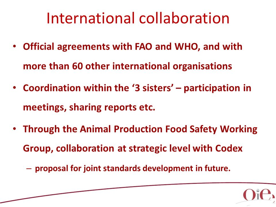 Official agreements with FAO and WHO, and with more than 60 other international organisations Coordination within the 3 sisters – participation in meetings, sharing reports etc.