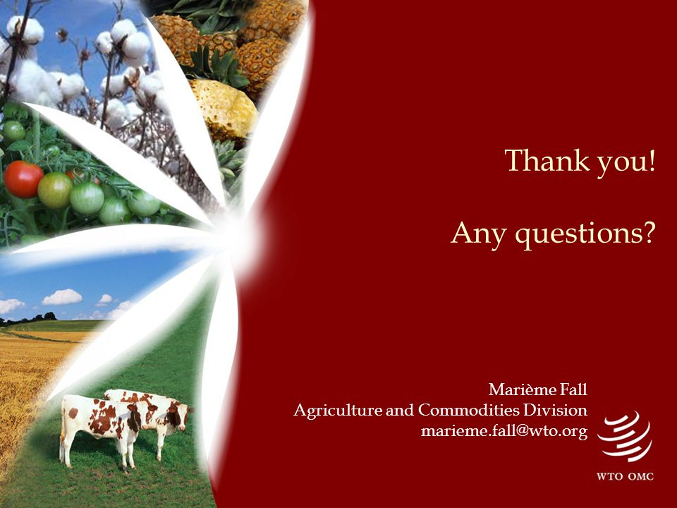 Thank you! Any questions Marième Fall Agriculture and Commodities Division marieme.fall@wto.org
