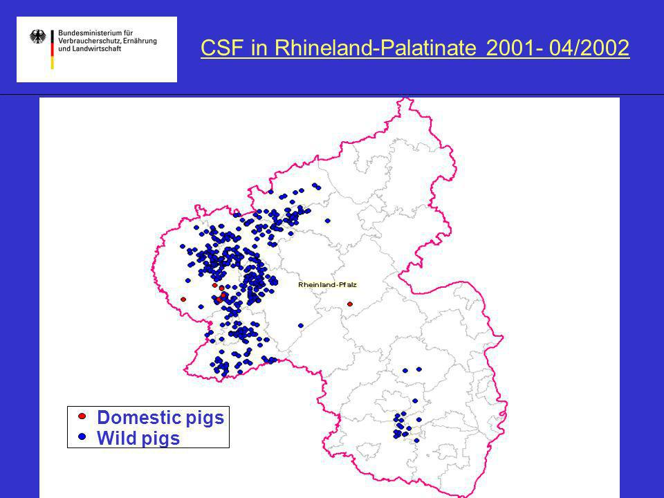 CSF in Rhineland-Palatinate 2001- 04/2002 Domestic pigs Wild pigs