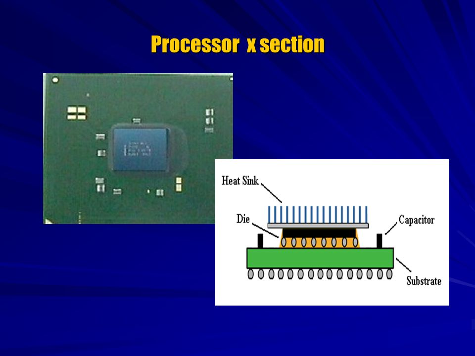 Processor x section