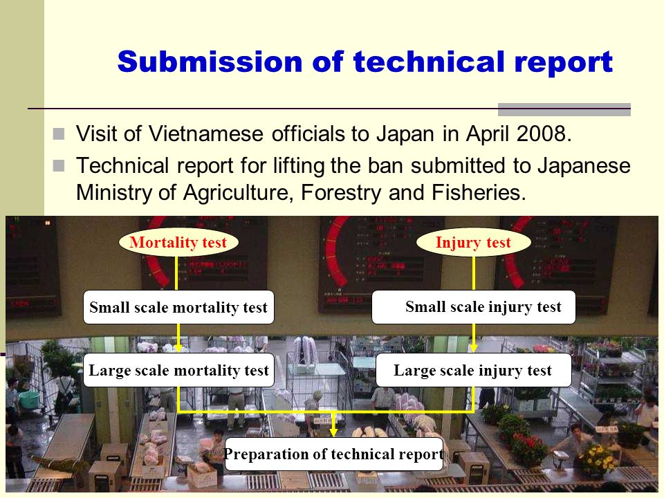 Submission of technical report Visit of Vietnamese officials to Japan in April 2008. Technical report for lifting the ban submitted to Japanese Minist