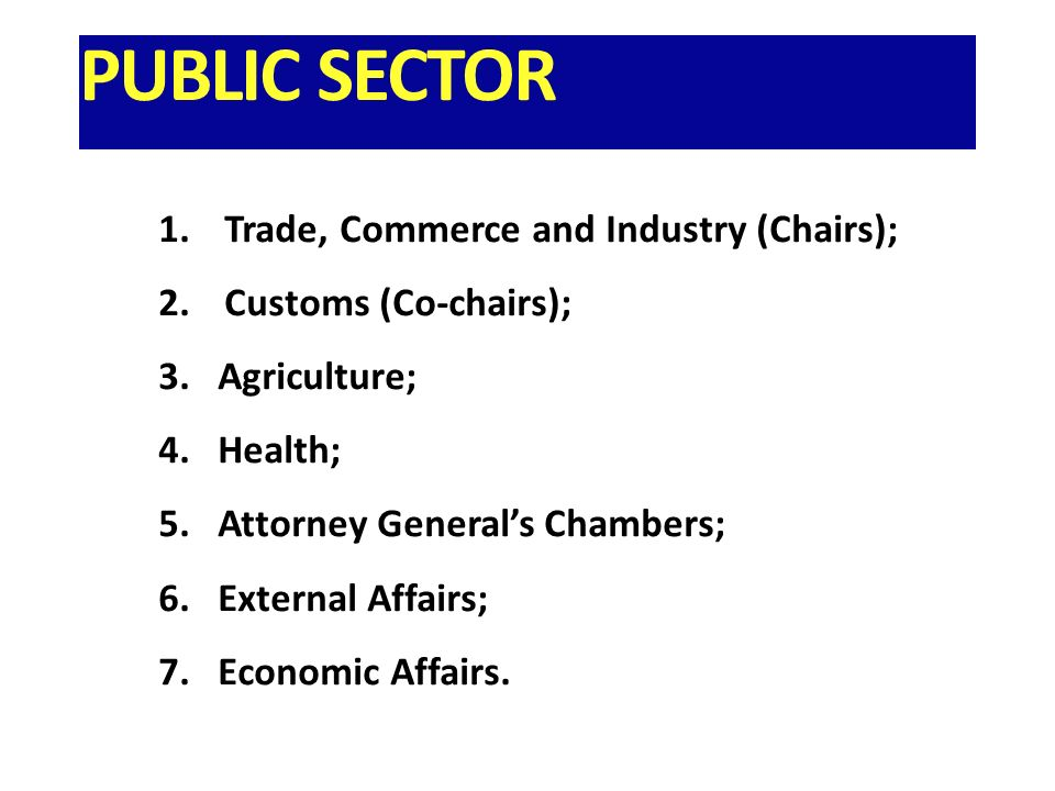 PUBLIC SECTOR 1.Trade, Commerce and Industry (Chairs); 2.Customs (Co-chairs); 3.Agriculture; 4.Health; 5.Attorney Generals Chambers; 6.External Affairs; 7.Economic Affairs.