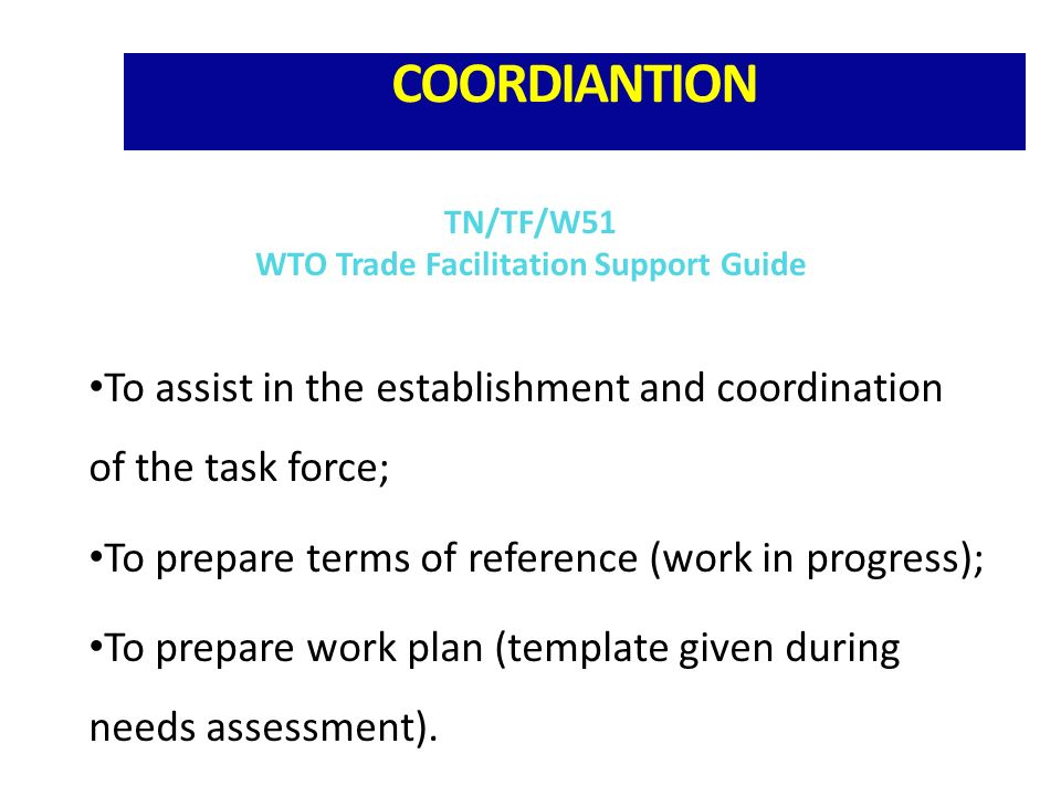 COORDIANTION To assist in the establishment and coordination of the task force; To prepare terms of reference (work in progress); To prepare work plan (template given during needs assessment).