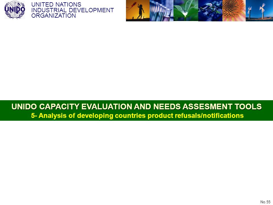 UNITED NATIONS INDUSTRIAL DEVELOPMENT ORGANIZATION No.55 UNIDO CAPACITY EVALUATION AND NEEDS ASSESMENT TOOLS UNIDO CAPACITY EVALUATION AND NEEDS ASSES