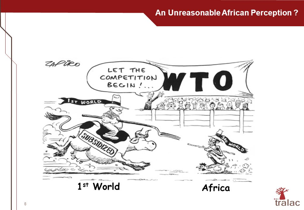 8 An Unreasonable African Perception 1 st World Africa