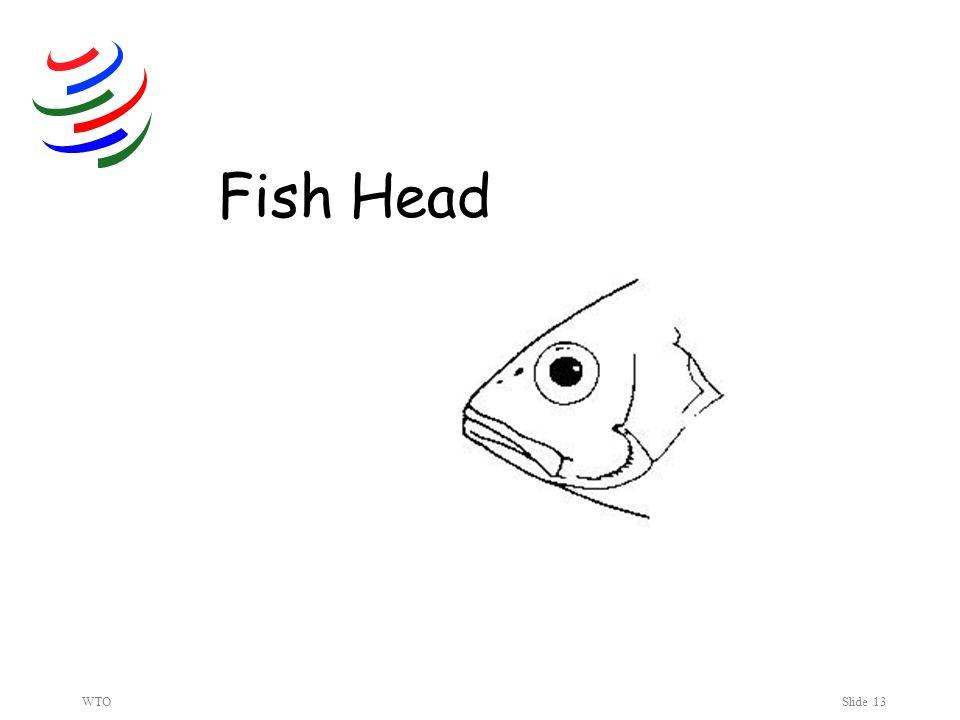 WTOSlide 13 Fish Head