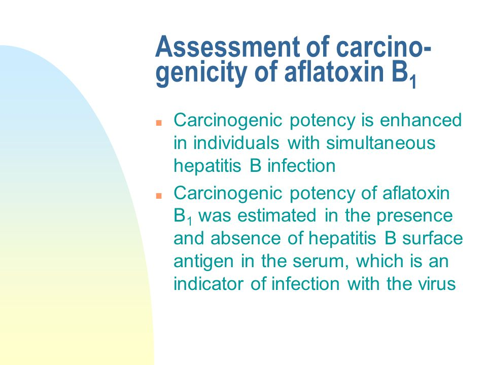 Carcinogenic potency of aflatoxin B 1 n For persons negative for hepatitis B virus: 0.01 case per year/100 000 people per ng of aflatoxin B 1 /kg body weight per day (range 0.002-0.03) n For persons positive for hepatitis B virus: 0.3 case per year/100 000 people per ng of aflatoxin B 1 /kg body weight per day (range 0.05-0.5); 30-fold higher than in the absence of hepatitis B surface antigen in the serum)