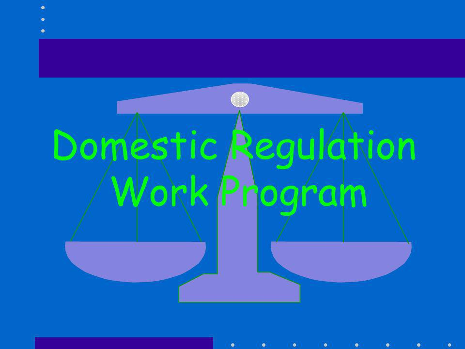 Domestic Regulation Work Program