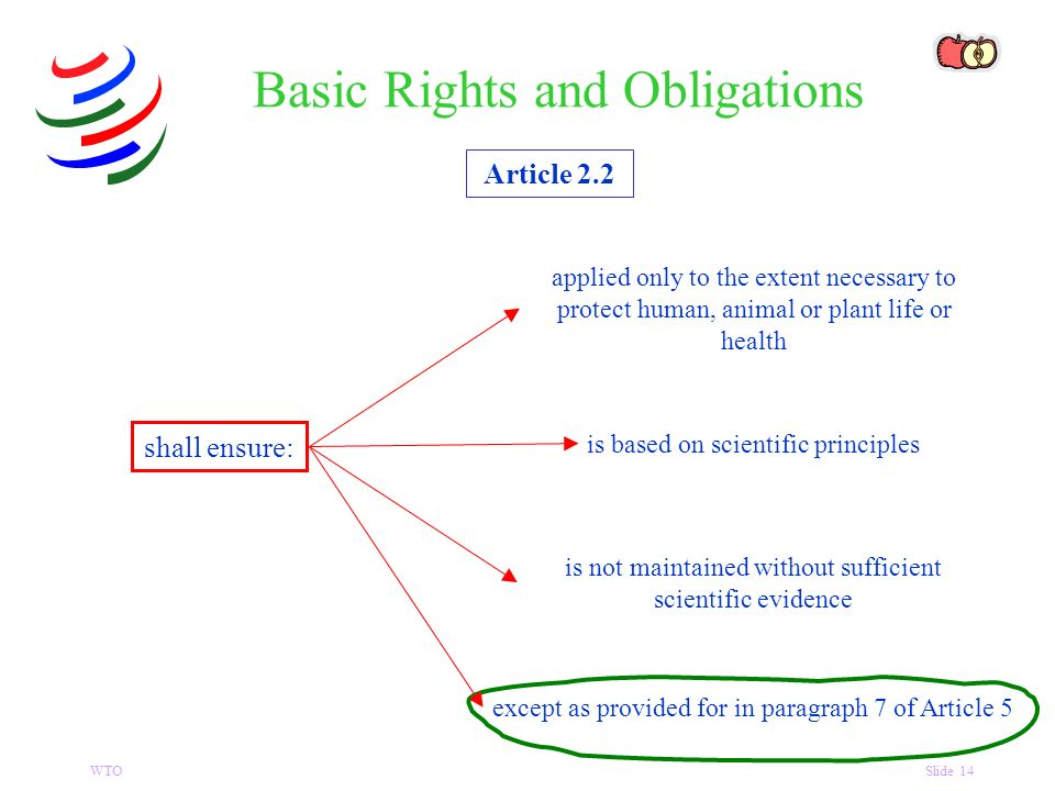 WTOSlide 14 Article 2.2 shall ensure: Basic Rights and Obligations applied only to the extent necessary to protect human, animal or plant life or health is based on scientific principles is not maintained without sufficient scientific evidence except as provided for in paragraph 7 of Article 5