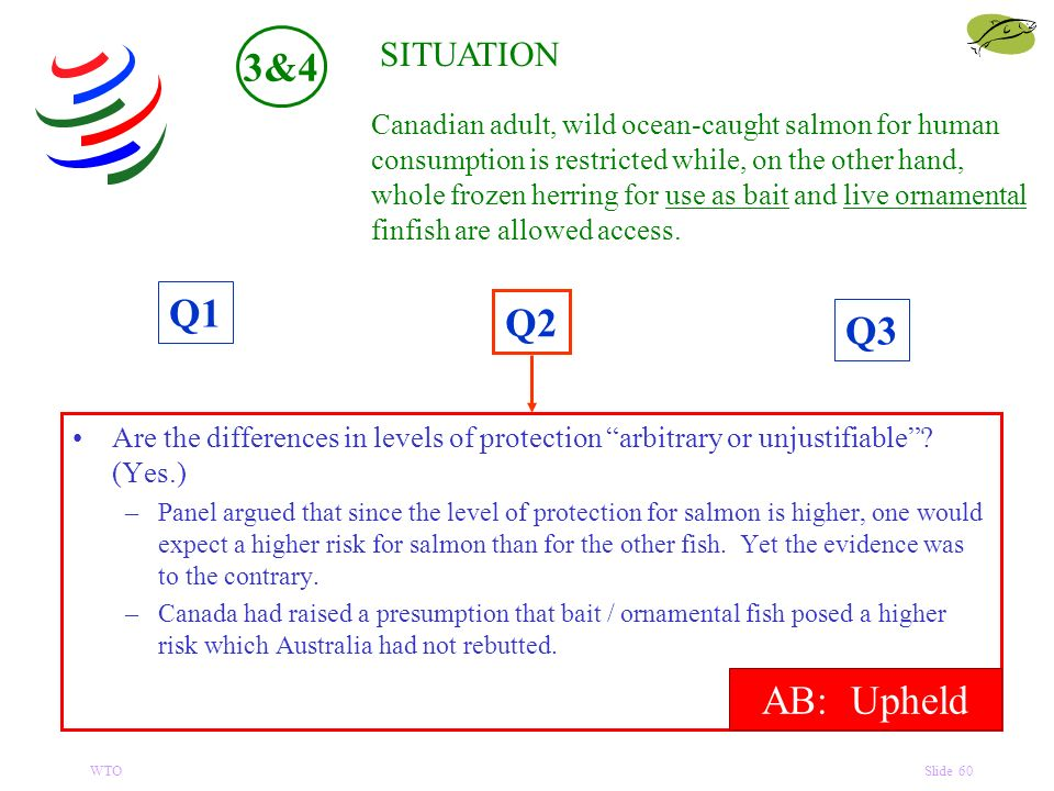 WTOSlide 60 Q1 Q3 Q2 SITUATION Are the differences in levels of protection arbitrary or unjustifiable.