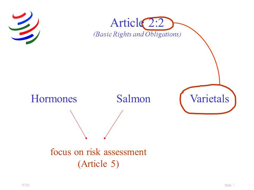 WTOSlide 7 focus on risk assessment (Article 5) HormonesSalmonVarietals Article 2:2 (Basic Rights and Obligations)