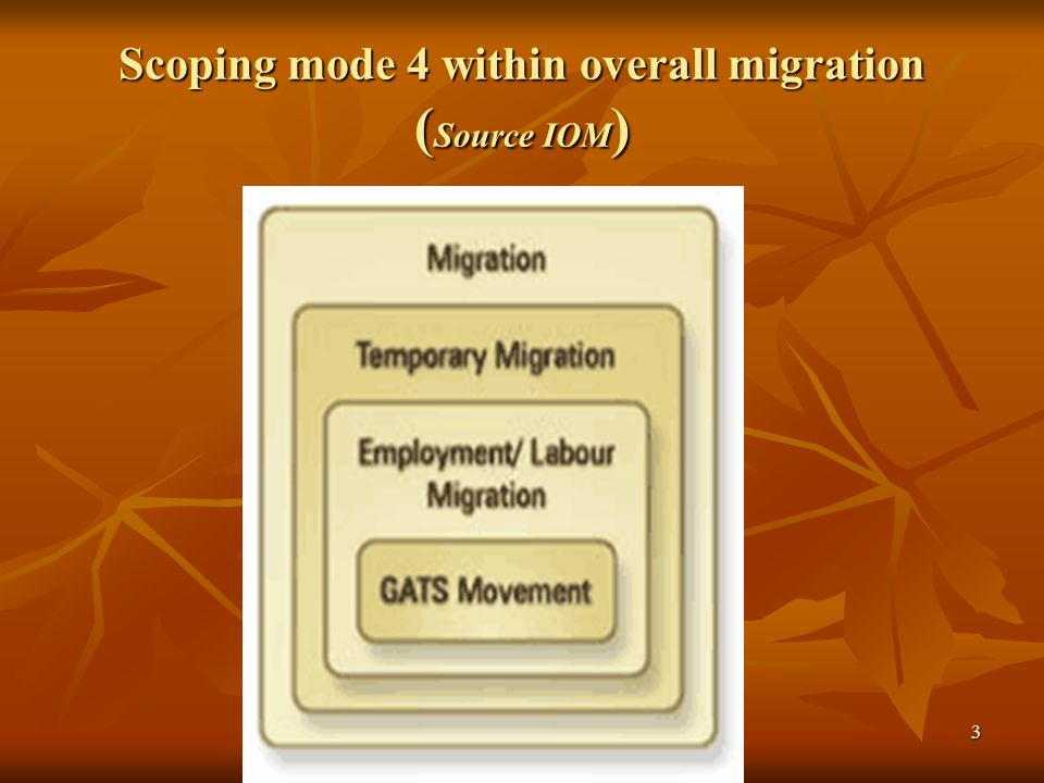 3 Scoping mode 4 within overall migration ( Source IOM )