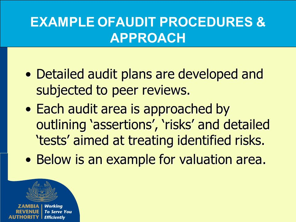 EXAMPLE OFAUDIT PROCEDURES & APPROACH Detailed audit plans are developed and subjected to peer reviews.Detailed audit plans are developed and subjecte
