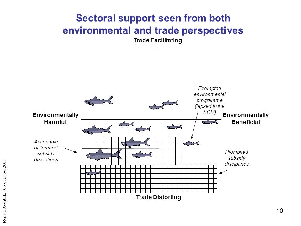 10 Trade Facilitating Trade Distorting Environmentally Beneficial Environmentally Harmful Prohibited subsidy disciplines Actionable or amber subsidy disciplines Ronald.Steenblik, 10 November 2003 Sectoral support seen from both environmental and trade perspectives Exempted environmental programme (lapsed in the SCM)
