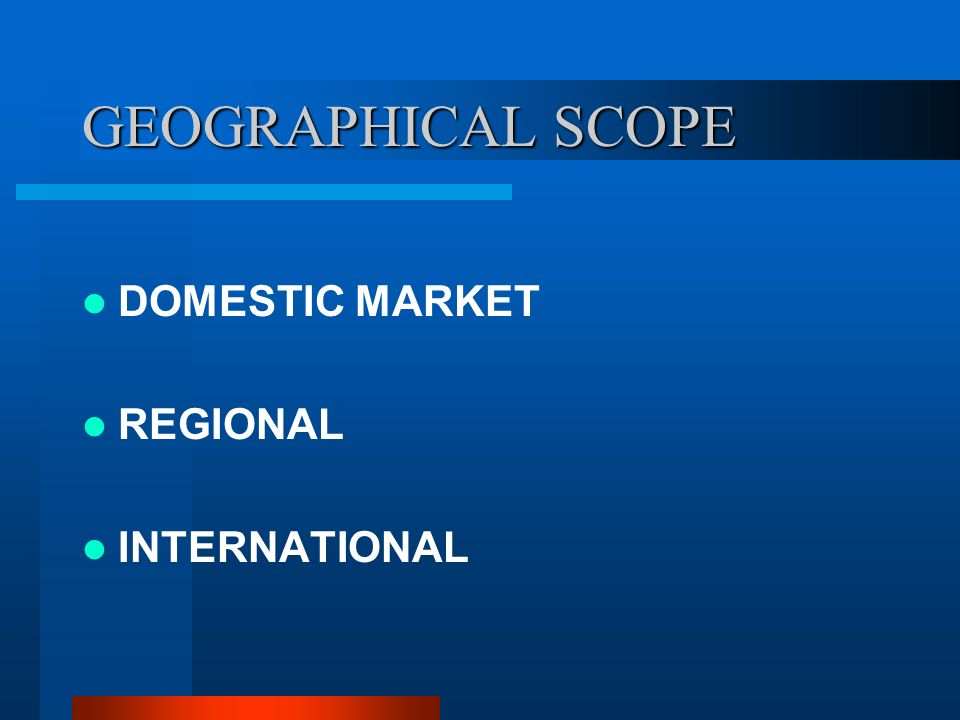 GEOGRAPHICAL SCOPE DOMESTIC MARKET REGIONAL INTERNATIONAL