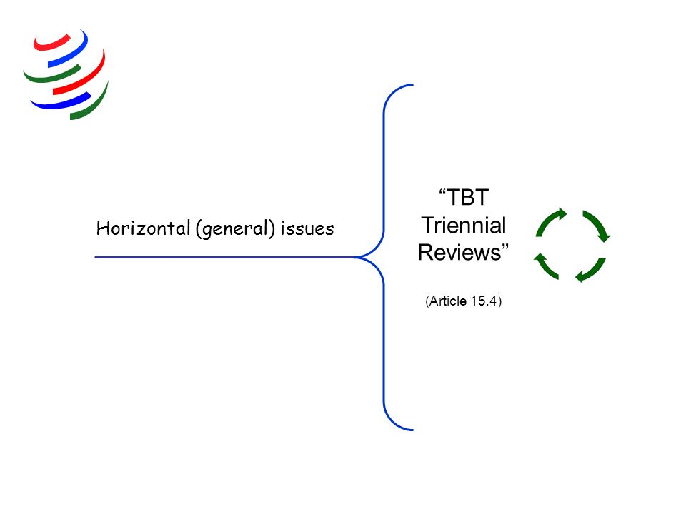 Horizontal (general) issues TBT Triennial Reviews (Article 15.4)