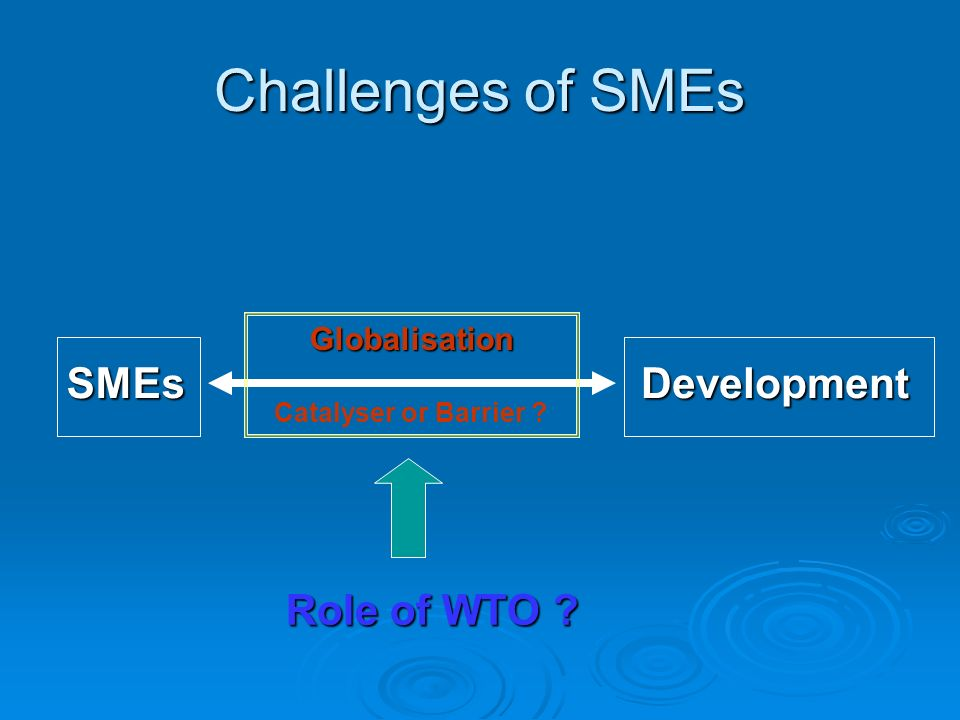 Challenges of SMEs SMEsDevelopment Globalisation Catalyser or Barrier ? Role of WTO ?