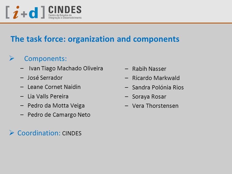 The task force: organization and components Components: – Ivan Tiago Machado Oliveira –José Serrador –Leane Cornet Naidin –Lia Valls Pereira –Pedro da