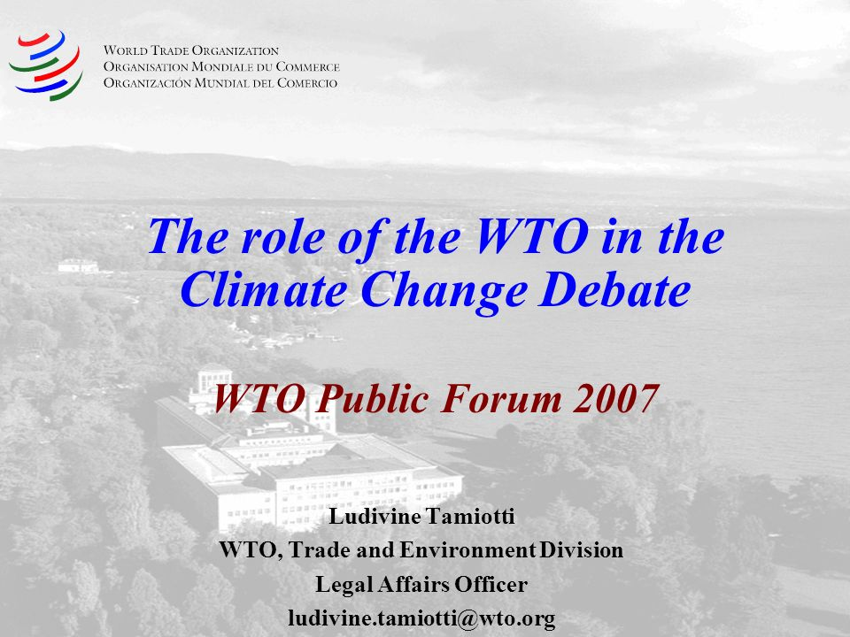 The role of the WTO in the Climate Change Debate WTO Public Forum 2007 Ludivine Tamiotti WTO, Trade and Environment Division Legal Affairs Officer