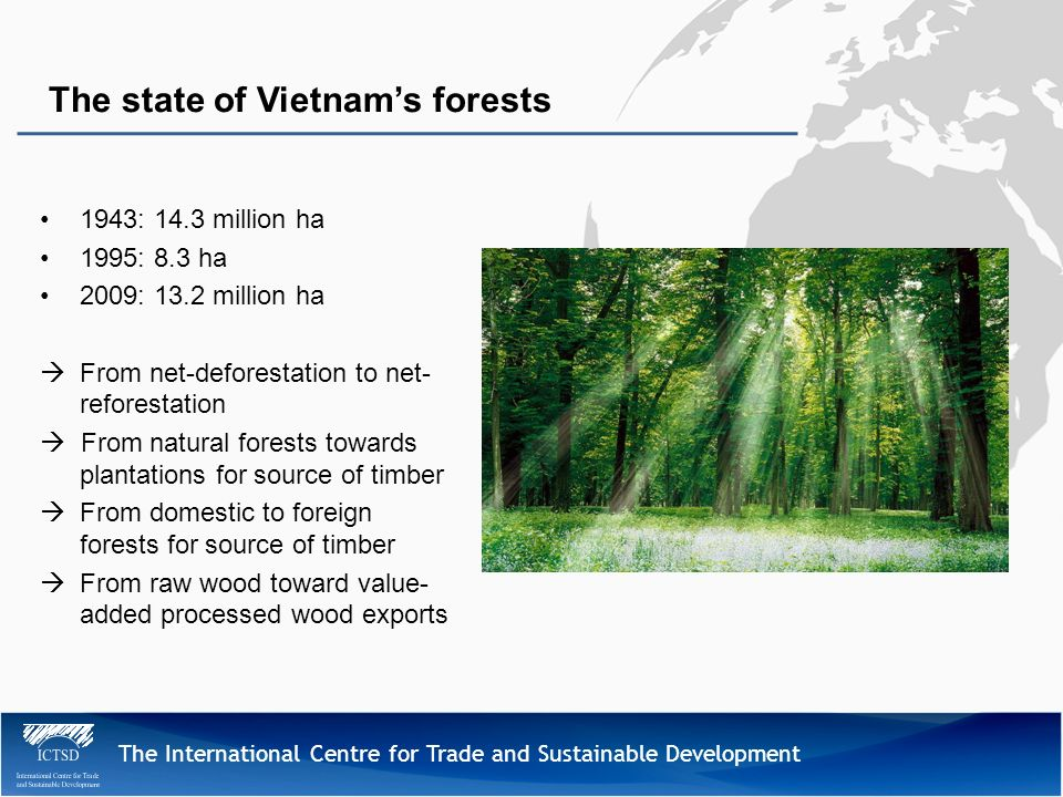 The International Centre for Trade and Sustainable Development 1943: 14.3 million ha 1995: 8.3 ha 2009: 13.2 million ha From net-deforestation to net- reforestation From natural forests towards plantations for source of timber From domestic to foreign forests for source of timber From raw wood toward value- added processed wood exports The state of Vietnams forests