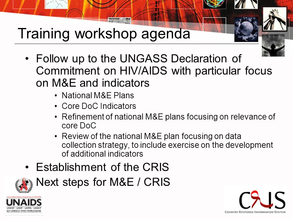 Training workshop agenda Follow up to the UNGASS Declaration of Commitment on HIV/AIDS with particular focus on M&E and indicators National M&E Plans