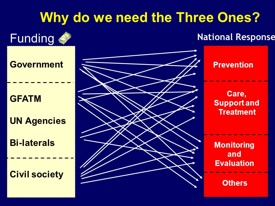 Funding Government GFATM UN Agencies Bi-laterals Civil society Prevention Others Monitoring and Evaluation Care, Support and Treatment National Response Why do we need the Three Ones